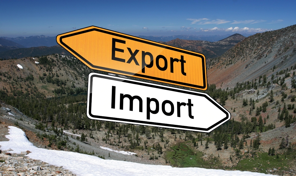 A Servile Society: The Value of Import-Export