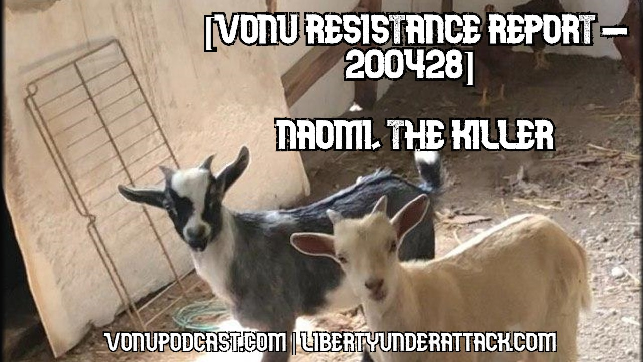 [Vonu Resistance Report – 200428] Naomi, The Killer