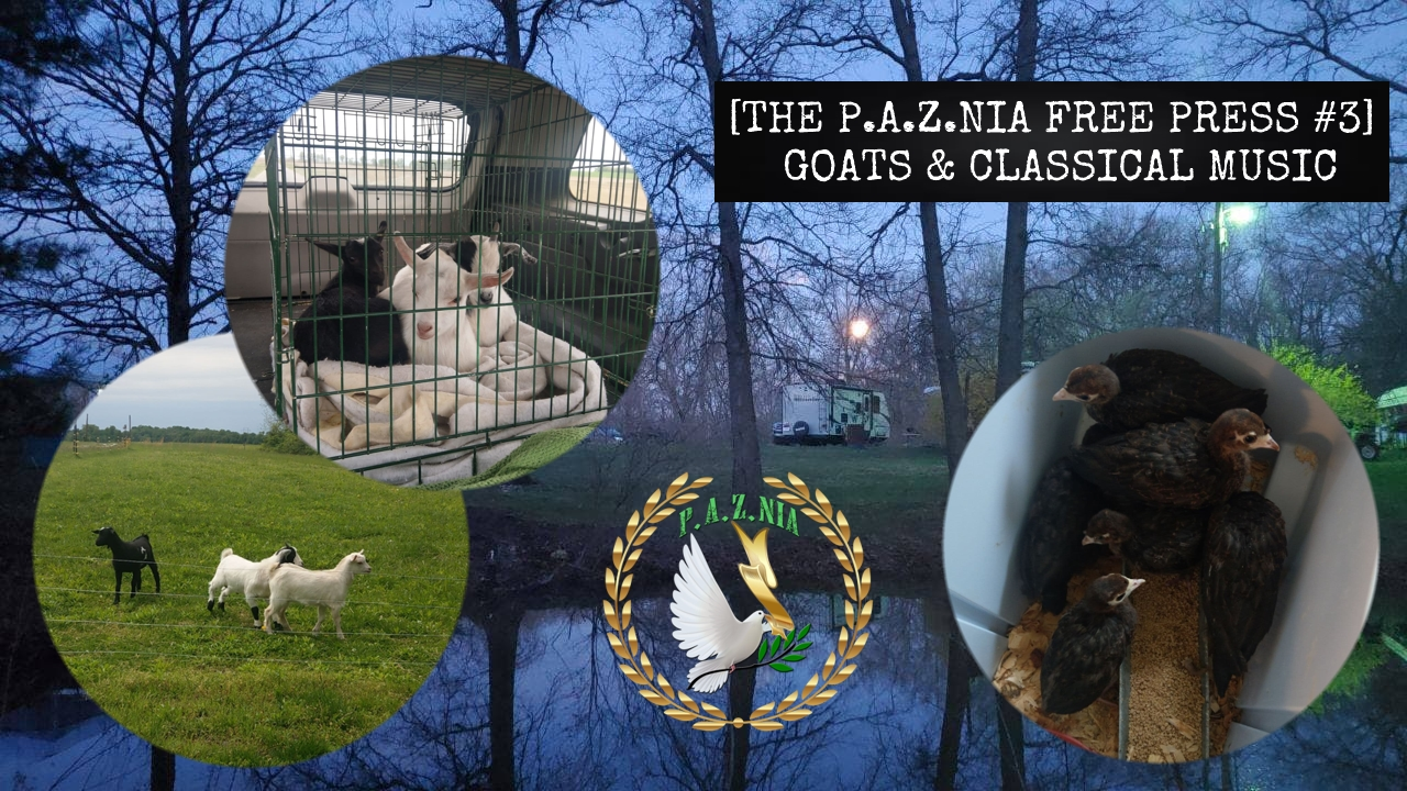P.A.Z.NIA Free Press #3: Goats & Classical Music [Video]